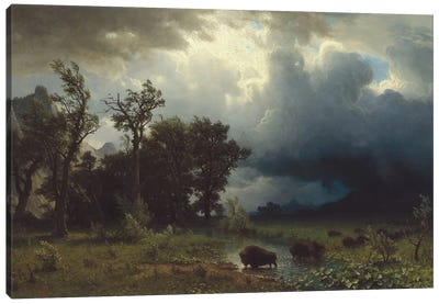 Buffalo Trail: The Impending Storm, 1869 Canvas Art Print