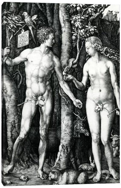 Adam And Eve, 1504 Canvas Art Print