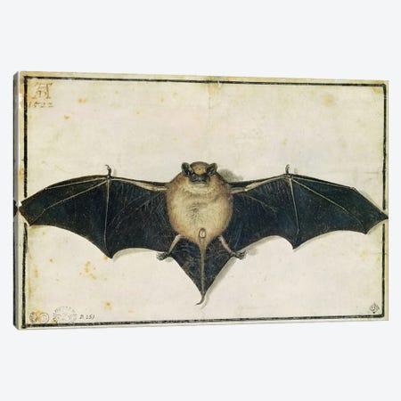Bat, 1522 Canvas Print #BMN6557} by Albrecht Dürer Canvas Art