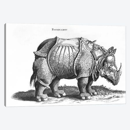 Rhinoceros Canvas Print #BMN6563} by Albrecht Dürer Canvas Art