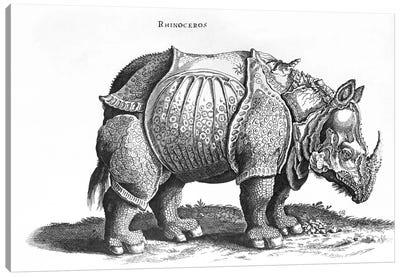Rhinoceros Canvas Art Print