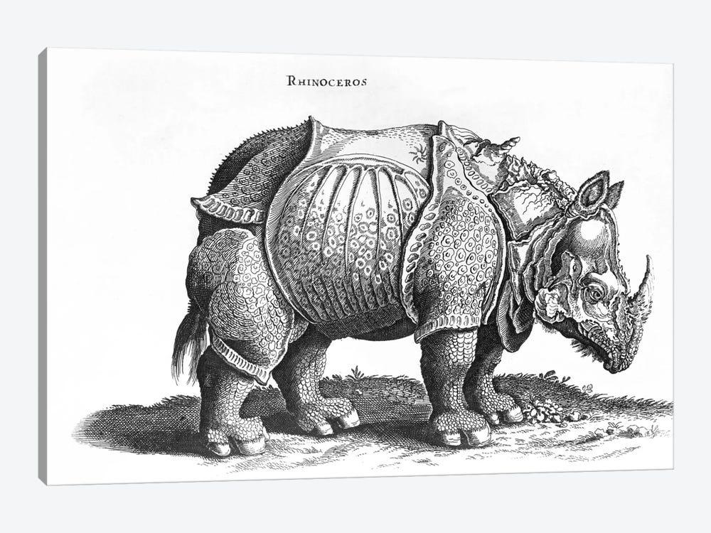 Rhinoceros by Albrecht Dürer 1-piece Canvas Wall Art