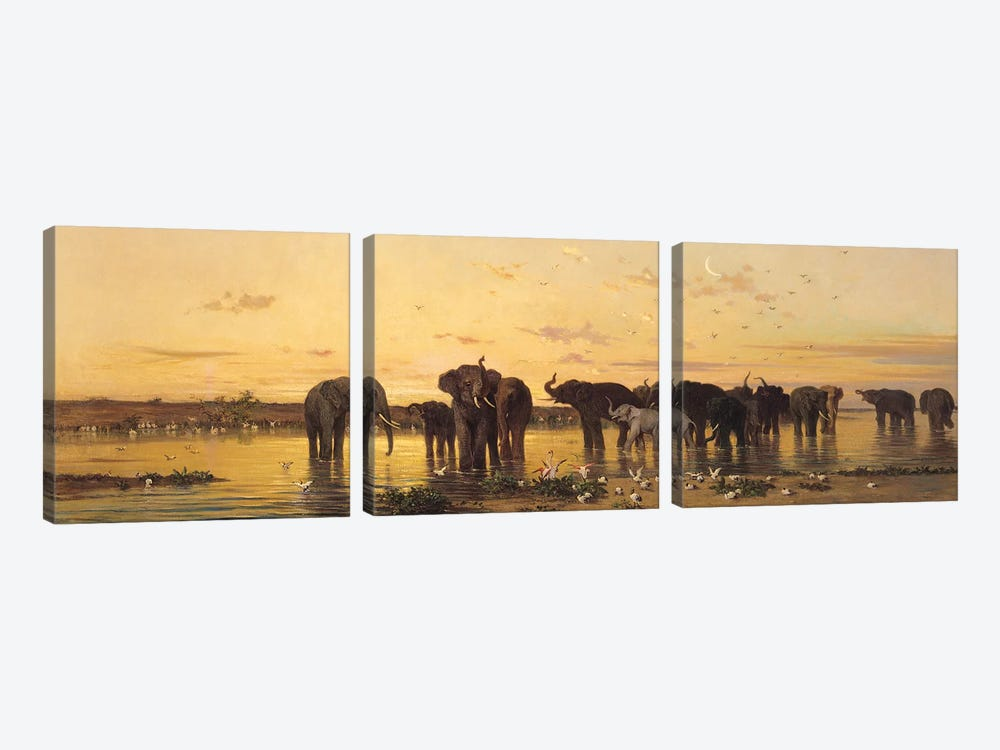 African Elephants  by Charles Emile de Tournemine 3-piece Canvas Art