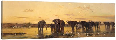 African Elephants  Canvas Art Print