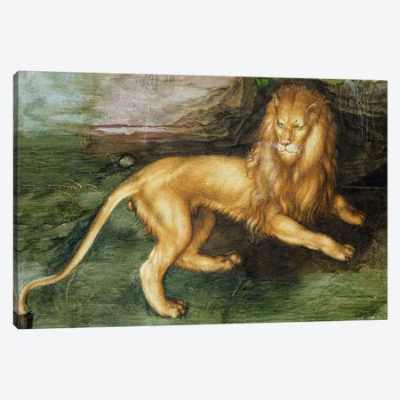 Lion Canvas Print #BMN6573} by Albrecht Dürer Canvas Art Print