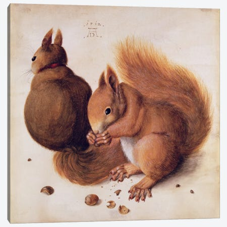 Squirrels, 1512 Canvas Print #BMN6582} by Albrecht Dürer Canvas Art