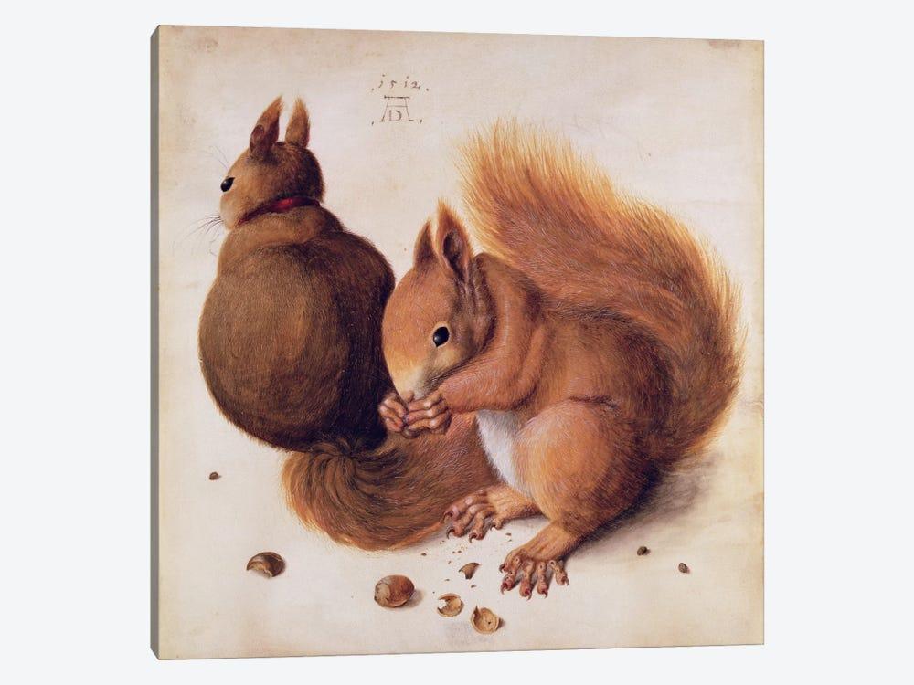 Squirrels, 1512 by Albrecht Dürer 1-piece Canvas Print
