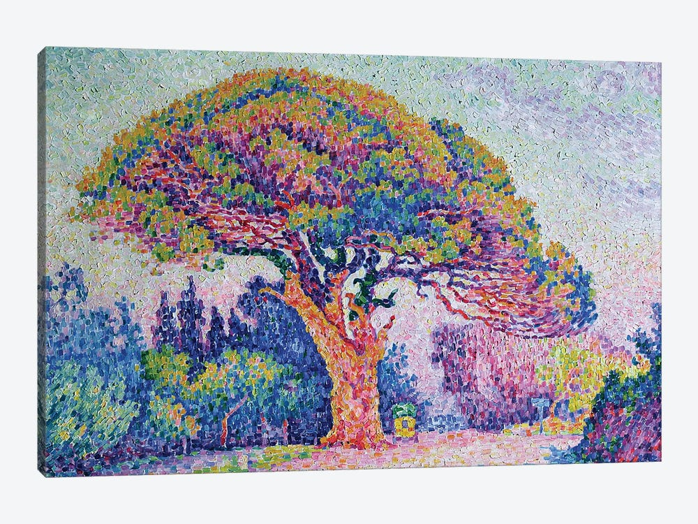 The Pine Tree at St. Tropez, 1909  by Paul Signac 1-piece Canvas Print