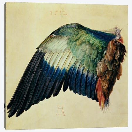 Wing Of A Blue Roller, 1512 Canvas Print #BMN6607} by Albrecht Dürer Canvas Wall Art