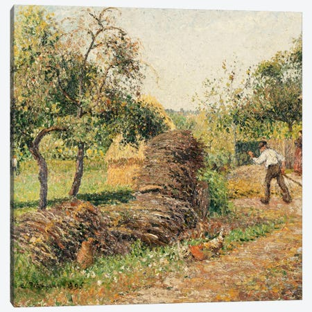 Court Of The Mother Lucien, Eragny, 1895 Canvas Print #BMN6647} by Camille Pissarro Canvas Art