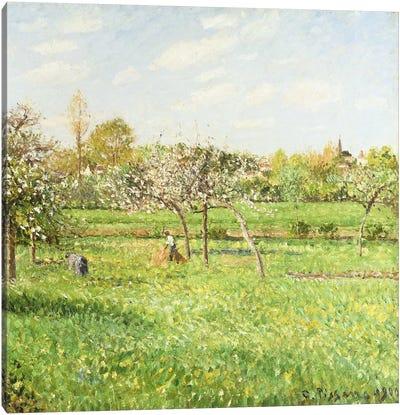 Morning, Spring, Grey Weather, Eragny, 1900 Canvas Art Print