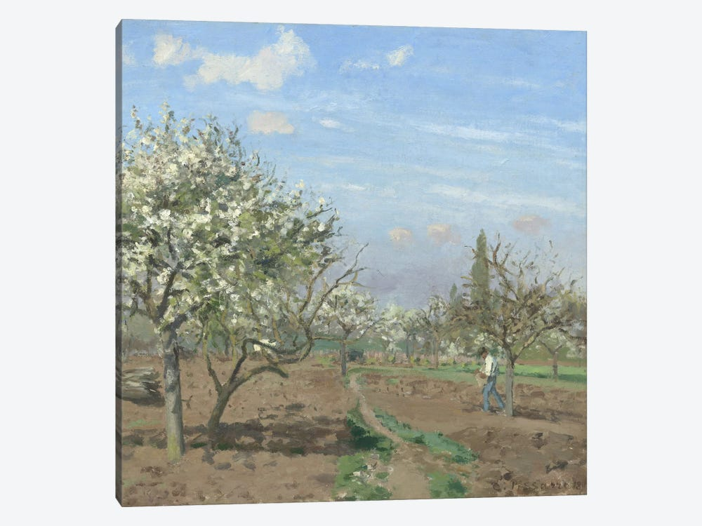 Orchard In Bloom, Louveciennes, 1872 by Camille Pissarro 1-piece Canvas Artwork