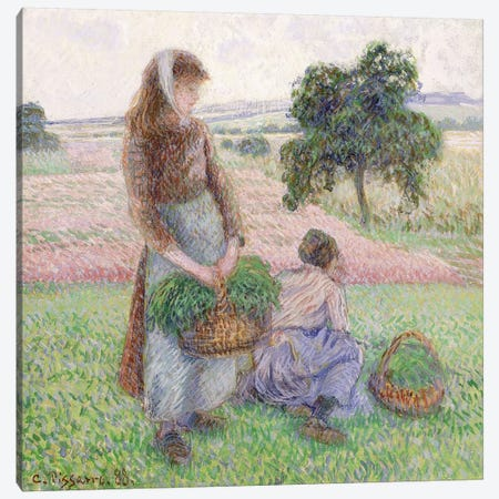 Peasants Carrying Baskets, 1888 Canvas Print #BMN6667} by Camille Pissarro Canvas Art