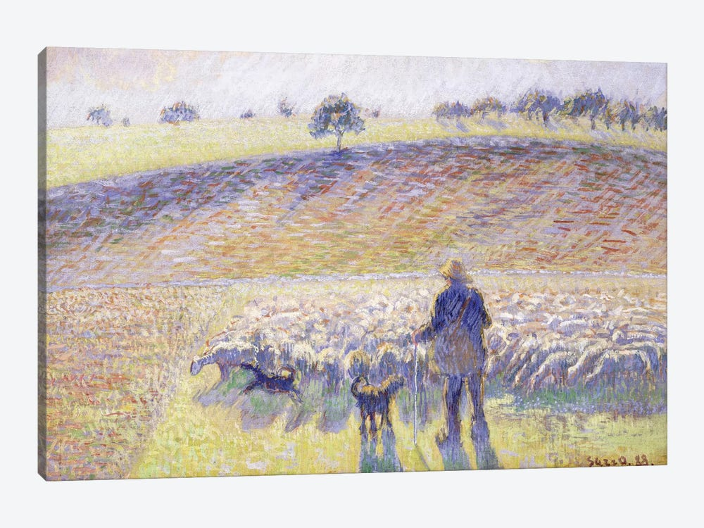 Shepherd With Sheep, 1888 by Camille Pissarro 1-piece Canvas Art