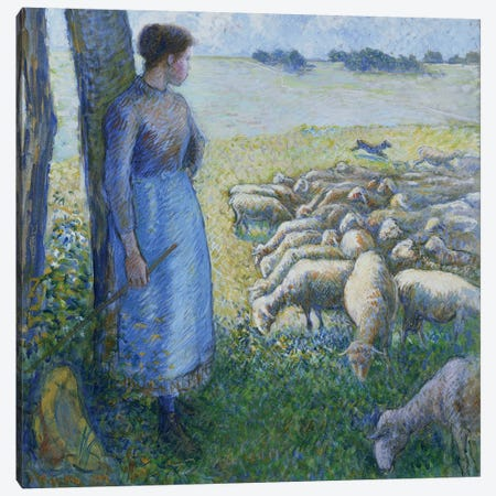 Shepherdess And Sheep, 1887 Canvas Print #BMN6675} by Camille Pissarro Art Print