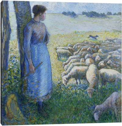 Shepherdess And Sheep, 1887 Canvas Art Print