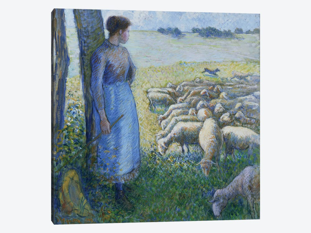 Shepherdess And Sheep, 1887 by Camille Pissarro 1-piece Canvas Print