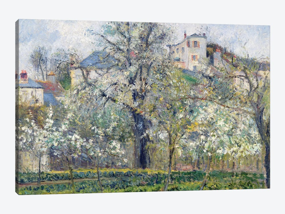 The Vegetable Garden With Trees In Blossom, Spring, Pontoise, 1877 by Camille Pissarro 1-piece Canvas Artwork