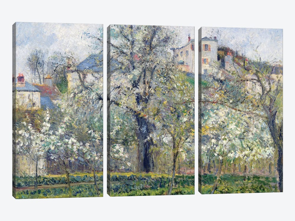 The Vegetable Garden With Trees In Blossom, Spring, Pontoise, 1877 by Camille Pissarro 3-piece Canvas Artwork