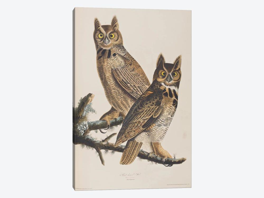 Great Horned Owl by John James Audubon 1-piece Art Print