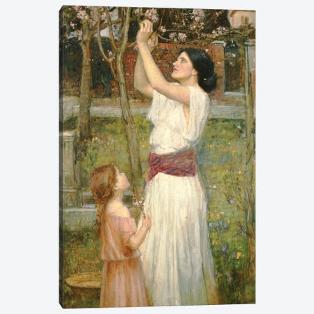 Almond Blossoms, c.1916 Canvas Print #BMN6756} by John William Waterhouse Canvas Artwork
