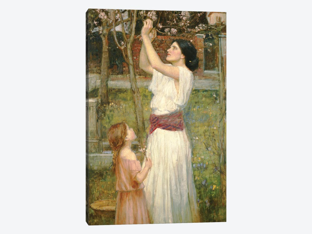 Almond Blossoms, c.1916 by John William Waterhouse 1-piece Canvas Print