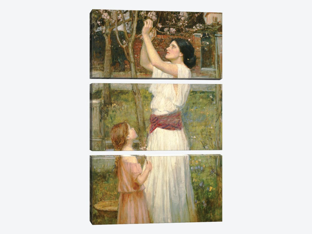 Almond Blossoms, c.1916 by John William Waterhouse 3-piece Art Print