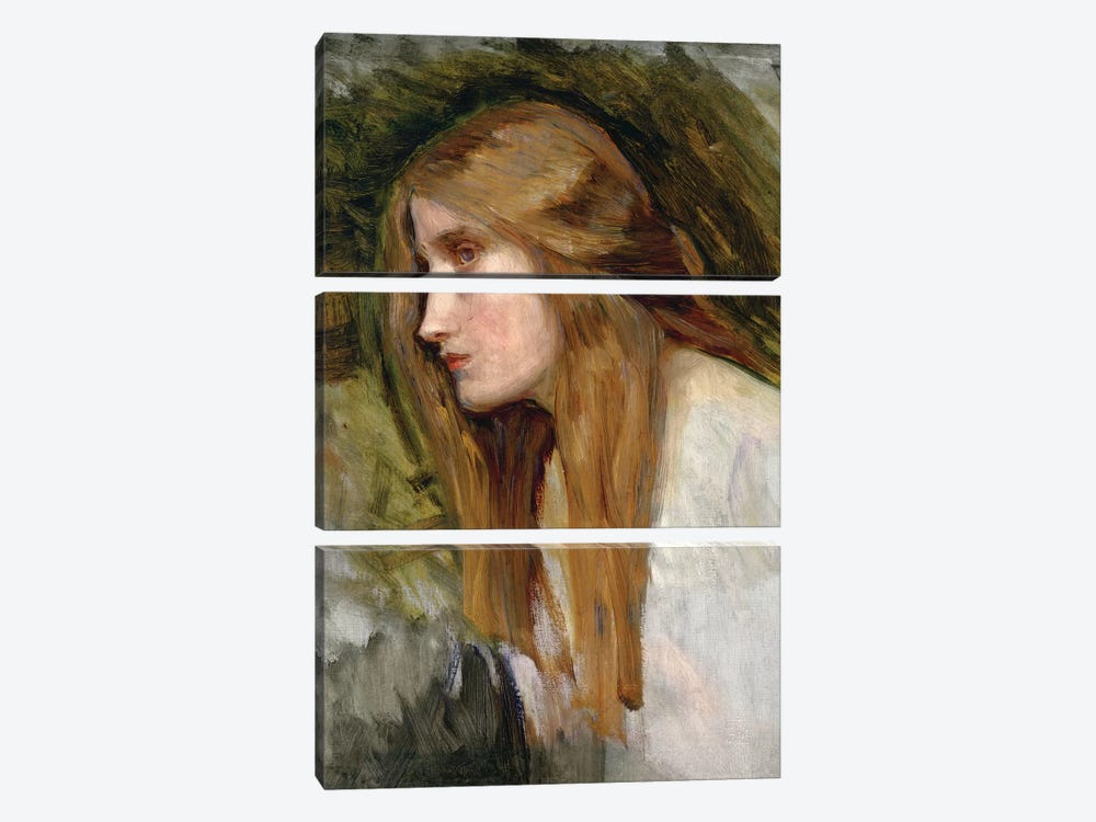 Head Of A Girl, c.1896 by John William Waterhouse 3-piece Canvas Wall Art