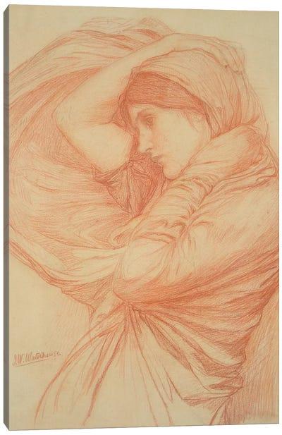 Study For Boreas Canvas Art Print