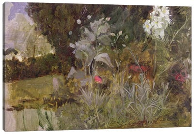 Study Of Flowers And Foliage For The Enchanted Garden Canvas Art Print