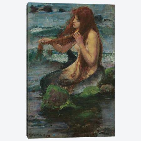 The Mermaid, 1892 Canvas Print #BMN6785} by John William Waterhouse Canvas Art Print