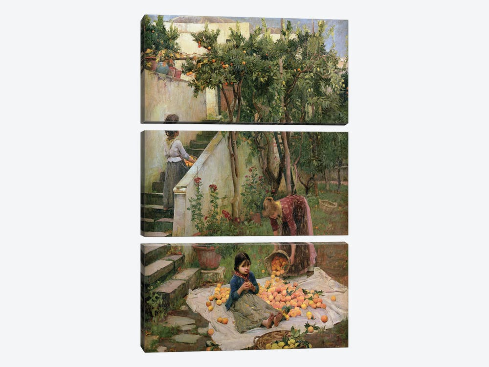 The Orange Gatherers by John William Waterhouse 3-piece Canvas Print