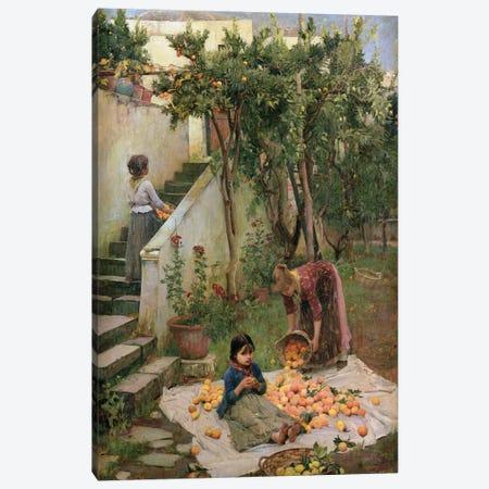 The Orange Gatherers Canvas Print #BMN6787} by John William Waterhouse Art Print