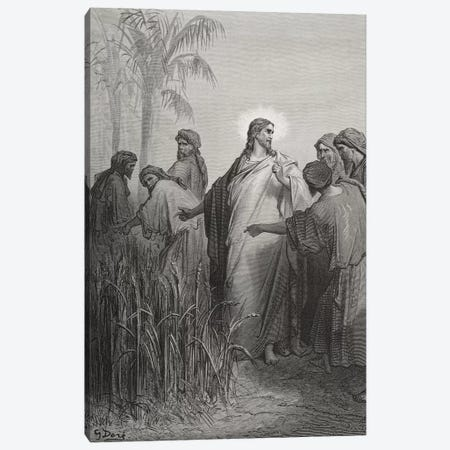 Jesus And His Disciples In The Corn Field (Illustration From Dore's The Holy Bible), 1866 Canvas Print #BMN6801} by Gustave Dore Art Print
