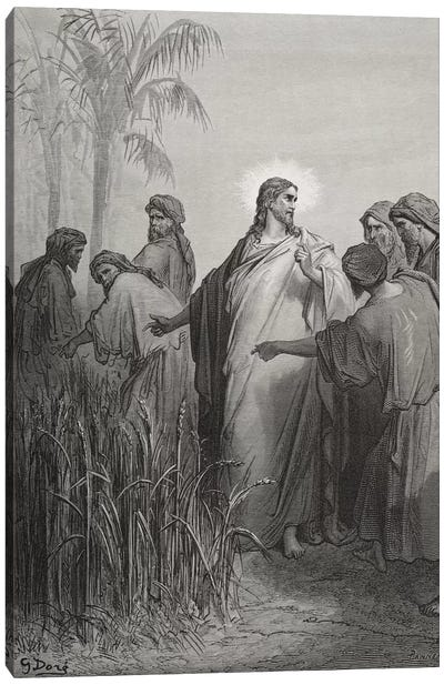 Jesus And His Disciples In The Corn Field (Illustration From Dore's The Holy Bible), 1866 Canvas Art Print