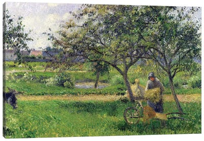 The Wheelbarrow, Orchard, c.1881 Canvas Art Print