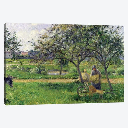 The Wheelbarrow, Orchard, c.1881 Canvas Print #BMN6990} by Camille Pissarro Canvas Art Print