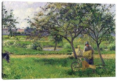 The Wheelbarrow, Orchard, c.1881 Canvas Art Print