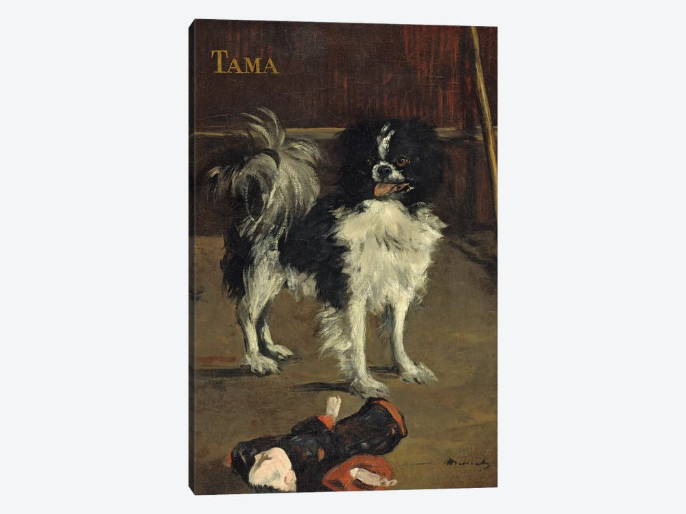 Tama, The Japanese Dog, c.1875 by Edouard Manet 1-piece Canvas Art Print