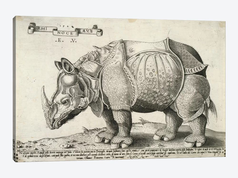 Rhinoceros, 1548 by Enea Vico 1-piece Canvas Print