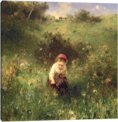 A Young Girl in a Field Canvas Art Print