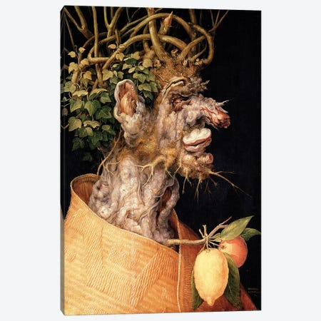 Winter, 1563 Canvas Print #BMN7073} by Giuseppe Arcimboldo Canvas Art Print