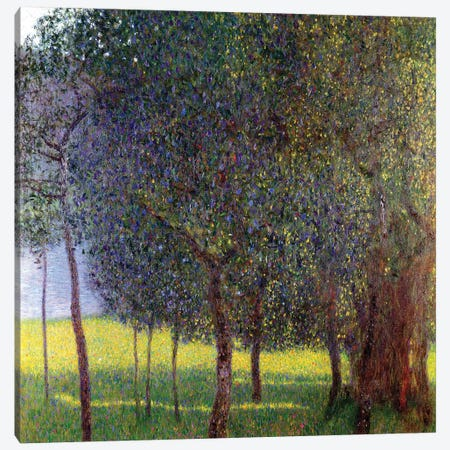 Fruit Trees, 1901 Canvas Print #BMN7080} by Gustav Klimt Canvas Wall Art
