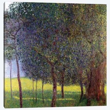 Fruit Trees, 1901 Canvas Print #BMN7080} by Gustav Klimt Canvas Wall Art