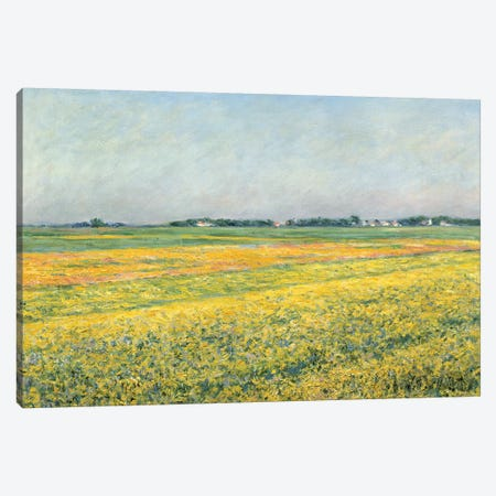 The Plain Of Gennevilliers, Yellow Fields, 1884 Canvas Print #BMN7084} by Gustave Caillebotte Canvas Print