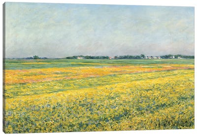 The Plain Of Gennevilliers, Yellow Fields, 1884 Canvas Art Print