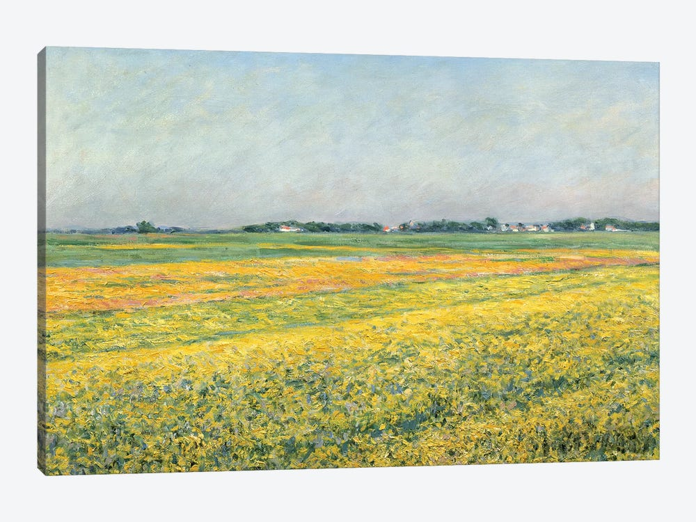 The Plain Of Gennevilliers, Yellow Fields, 1884 by Gustave Caillebotte 1-piece Art Print