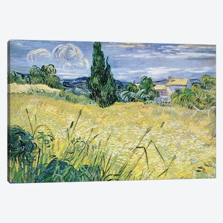 Landscape with Green Corn, 1889  Canvas Print #BMN709} by Vincent van Gogh Canvas Art Print