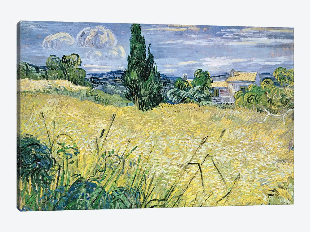 Landscape with Green Corn, 1889  by Vincent van Gogh 1-piece Art Print