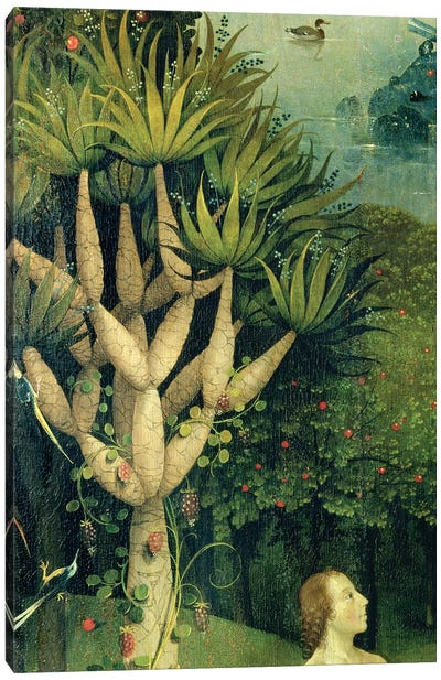 Detail Of The Tree Of Knowledge Of Good And Evil In Paradise, The Garden Of Earthly Delights, 1490-1500 Canvas Art Print